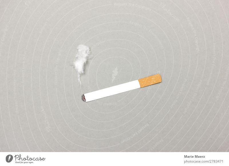 Burning cigarette with smoke Lifestyle Healthy Smoking Breathe Gray Vice Appetite Stress Drug addiction To enjoy Nicotine Smoke Cigarette Addiction Ritual