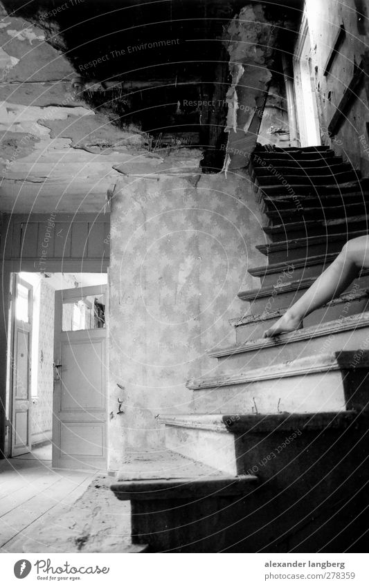 border Black & white photo Interior shot Shallow depth of field Woman's leg 1 Person Individual Only one woman Stairs Derelict Shabby Old Uninhabited