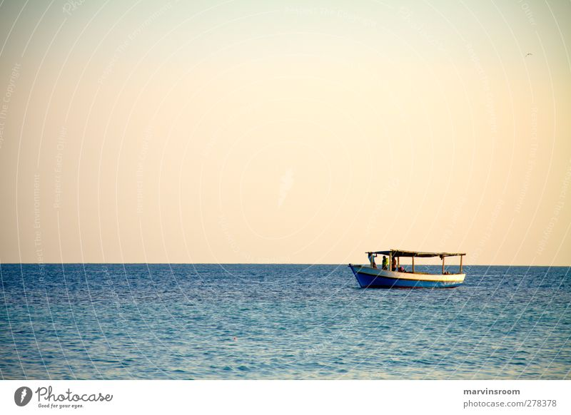 alone at sea Ocean Landscape Cloudless sky Beautiful weather Waves Coast Boating trip Fishing boat Blue Colour photo Evening Wide angle
