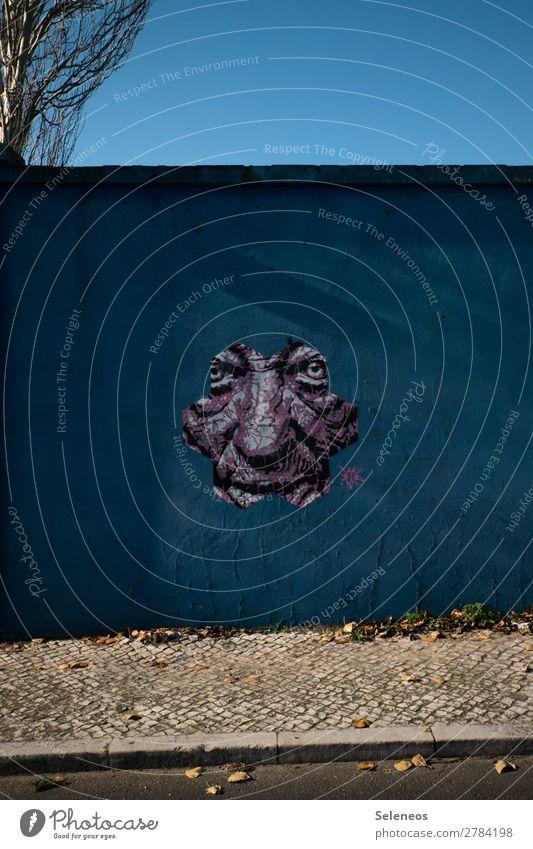 Human being Face Graffiti Wall (building) Wall (barrier) Facade Masculine Observe
