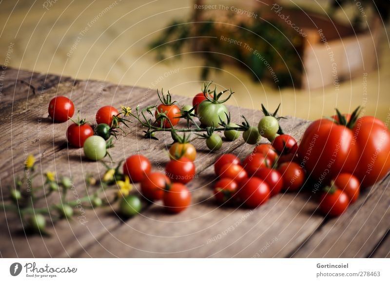 Healthy Food Fresh Nutrition Vegetable Harvest Organic produce Tomato Vegetarian diet Food photograph Wooden table Slow food Wooden box Cocktail tomato