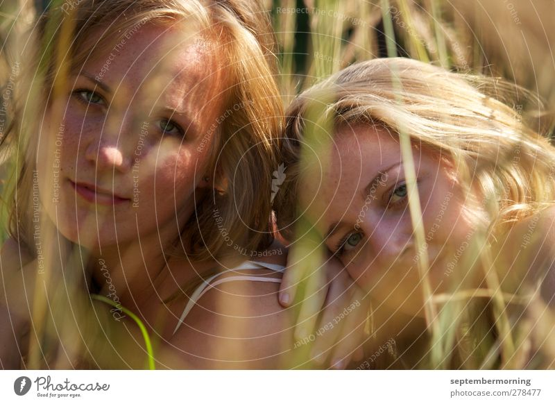 in summer Feminine Youth (Young adults) 2 Human being 18 - 30 years Adults Nature Beautiful weather Field Blonde Fresh Together Near Soft Sympathy Calm