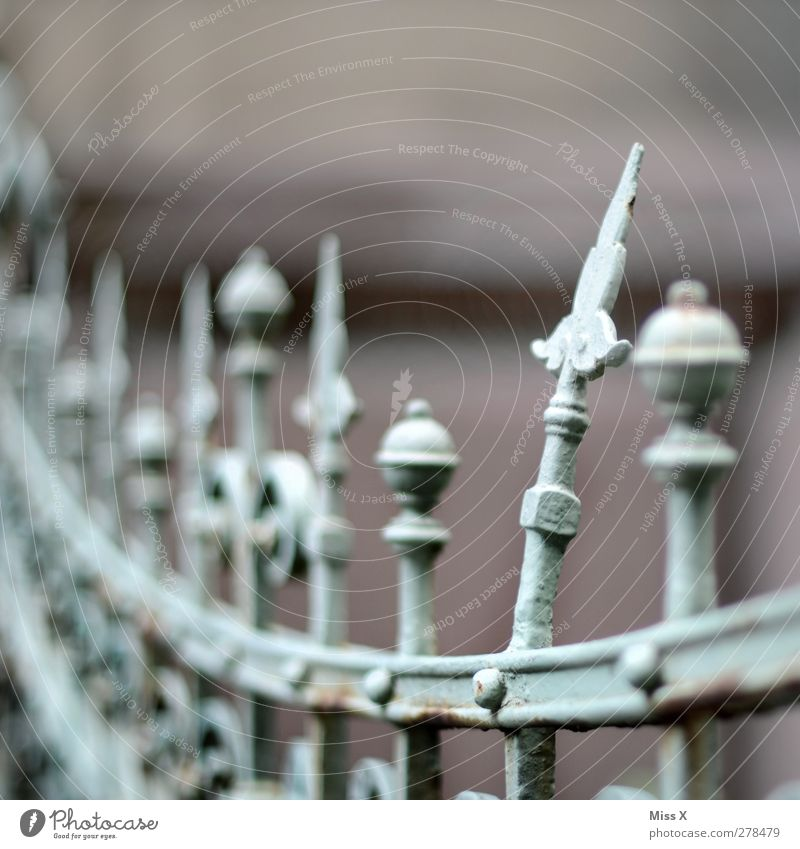 Teeth from the crown Metal Old Broken Point Curved Wrought iron Wrought ironwork Prongs Fence Metalware Colour photo Subdued colour Exterior shot Close-up