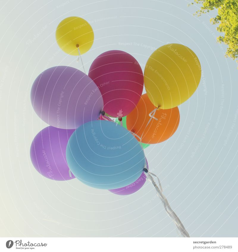 Blue Green Summer Yellow Above Happy Party Bright Feasts & Celebrations Pink Flying Birthday Happiness Beautiful weather Balloon Retro