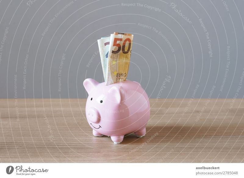 Piggy bank with Euro banknotes Financial Industry Business Pink Bank note Money box Luxury Save Colour photo Interior shot Studio shot Deserted Copy Space left