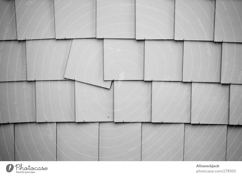 punk Wall (barrier) Wall (building) Simple Broken Gray Revolt Tile Row quirrolant Pattern Tilt Flexible Black & white photo Exterior shot Deserted Day