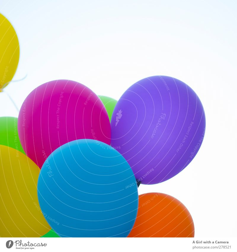 what a day! Lifestyle Decoration Round Many Crazy Multicoloured Balloon Feasts & Celebrations Joy Colour photo Exterior shot Detail Aerial photograph