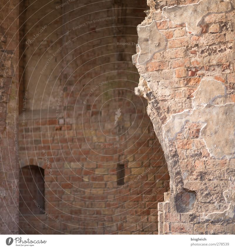 Monastery VII Chorin Federal eagle Europe Small Town Church Chorin cloister Wall (barrier) Wall (building) Stone Old Brown Transience Colour photo Interior shot