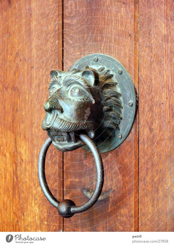 watchdog Wood Entrance Bronze Lion Patina Knob Doorknob Obscure Gate door ring Knocker Detail Section of image Front door Wooden door Decoration Animal figure