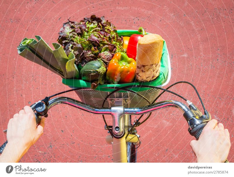 Closeup of woman winth groceries in a basket bike Food Vegetable Fruit Bread Lifestyle Shopping Happy Beautiful Relaxation Leisure and hobbies Summer Sun Sports