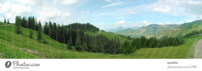 Allgäu panorama2 Meadow Panorama (View) Vantage point Tree Far-off places Mountain Valley Large Panorama (Format)