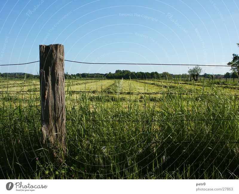 Sky Sun Green Blue Meadow Grass Horizon Lawn Fence Wire Pole
