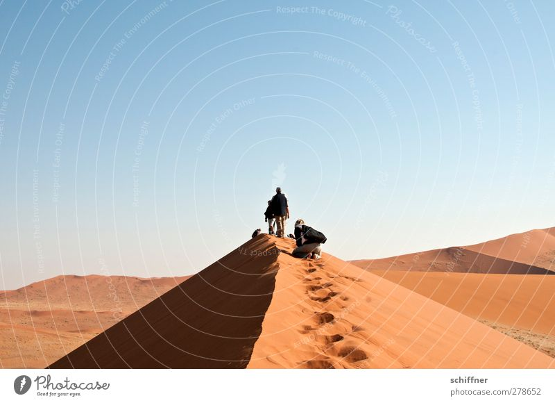 Human being Nature Red Landscape Far-off places Environment Sand Stand Peak Vantage point Desert Beach dune Dune Go up Namibia Mountain ridge