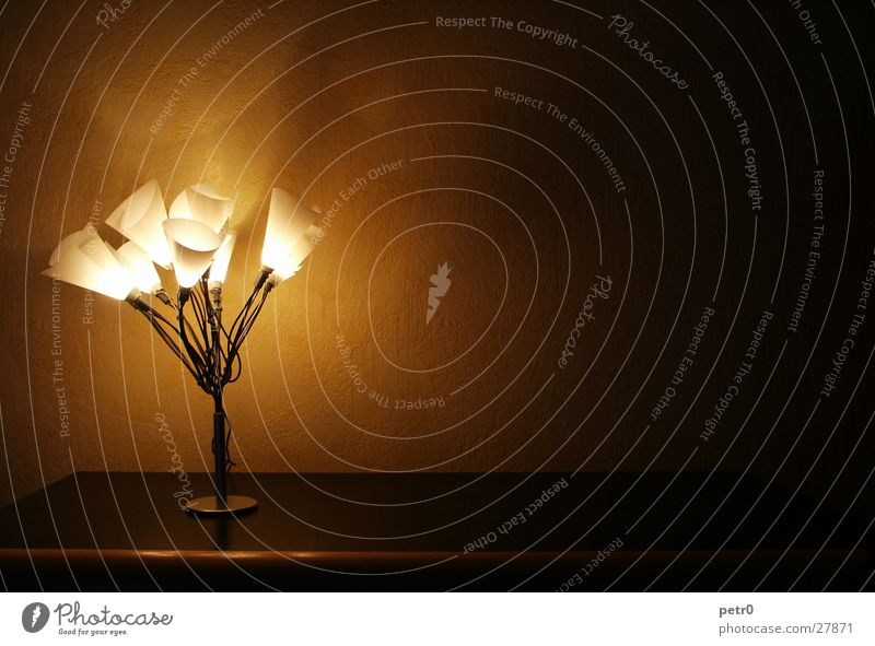 A bouquet of warm light Wall (building) Lamp Lampshade Light Cupboard Dark Wallpaper Wire Living or residing Cable warm shade Floodlight Lighting
