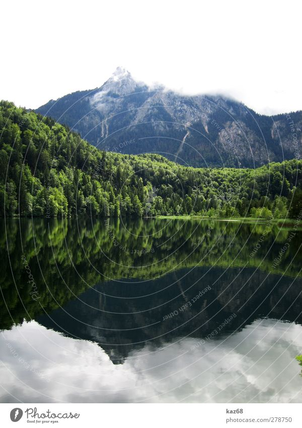 Allgäu Swimming & Bathing Fishing (Angle) Vacation & Travel Trip Summer Summer vacation Mountain Hiking Climbing Mountaineering Nature Landscape Water Tree