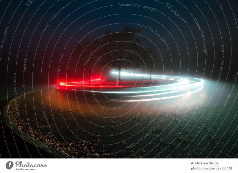 View of abstract shines on road between fog at night Abstract Street Night Fog Vantage point Light Line Bright Lanes & trails Tree Landscape Evening Dark