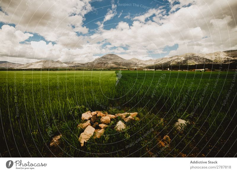 Big field and high hills in cloudy weather Field Hill Weather Clouds Meadow Grass Mountain Sky Blue Green Height Plant big huge Verdant Lawn Conceptual design