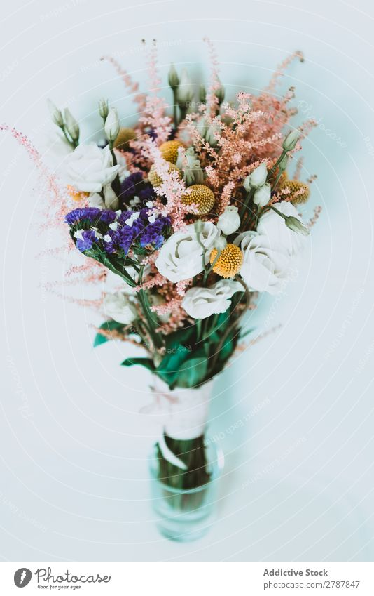 Bouquet of fresh flowers Flower Fresh Wedding Aromatic Beautiful Plant