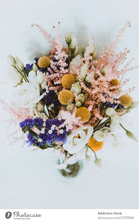 Bouquet of fresh flowers Flower Fresh valentine Wedding bridal bunch Aromatic Beautiful Plant Floral Decoration Blossom Natural romantic Feasts & Celebrations