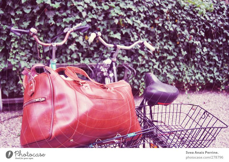 Leaf Bicycle Retro Asphalt Violet Wheel Ivy Handbag Stone floor Bicycle rack Traveling bag