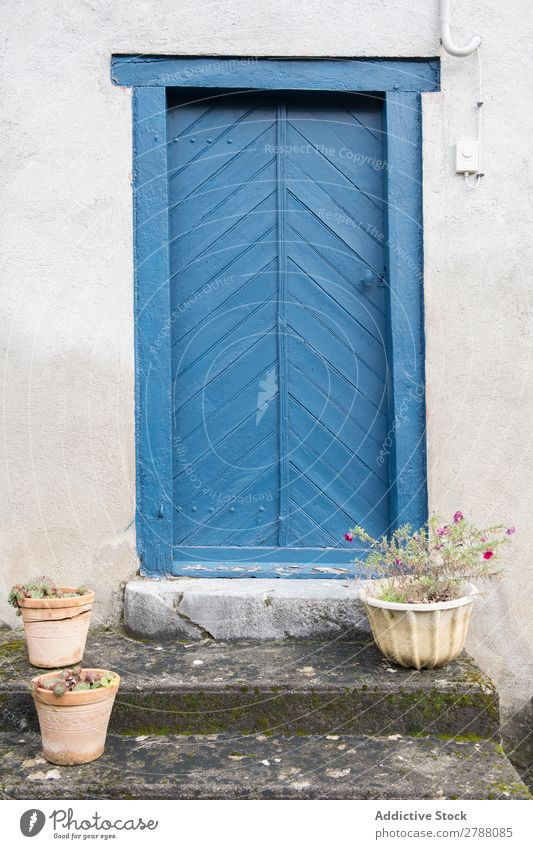 Building with blue door and flowers on steps Door Flower Pyrenees Construction Pot Stairs Blue White Facade Old Plant Stone Vacation & Travel Street Beautiful