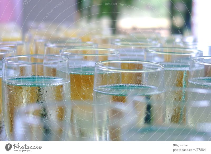 Party Feasts & Celebrations Glass Beverage Bubble Alcoholic drinks Sparkling wine Welcome Champagne Zoom effect Jubilee