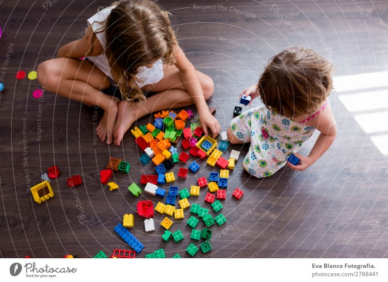 two beautiful sibling sisters playing at home Child Human being Joy Girl Wood Feminine Family & Relations Happy Small Playing School Smiling Infancy Sit