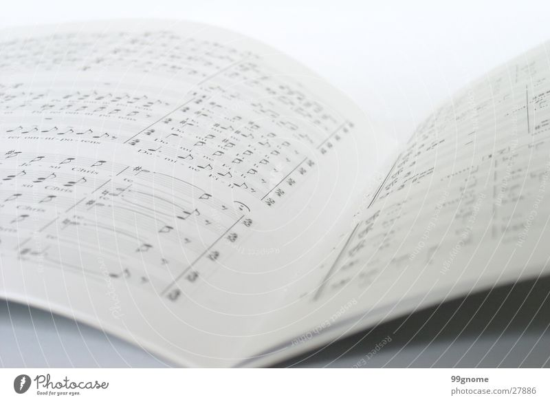 White Music Gray Concert Musical notes Song Text