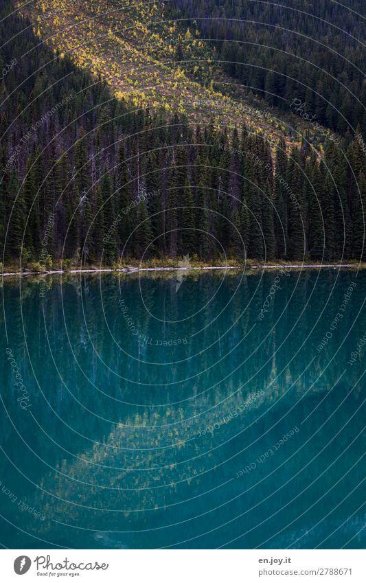 Vacation & Travel Nature Landscape Forest Autumn Lake Hill Lakeside Turquoise Canada Slope Mountain lake North America British Columbia Lake Emerald