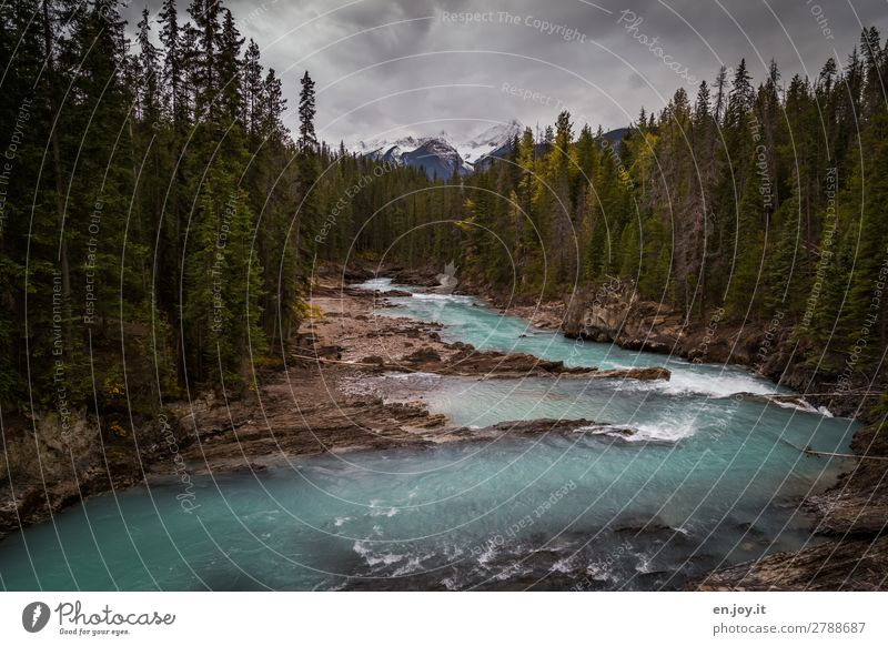 Vacation & Travel Nature Landscape Clouds Forest Mountain Autumn Environment Tourism Rock Trip Idyll Adventure Climate River River bank