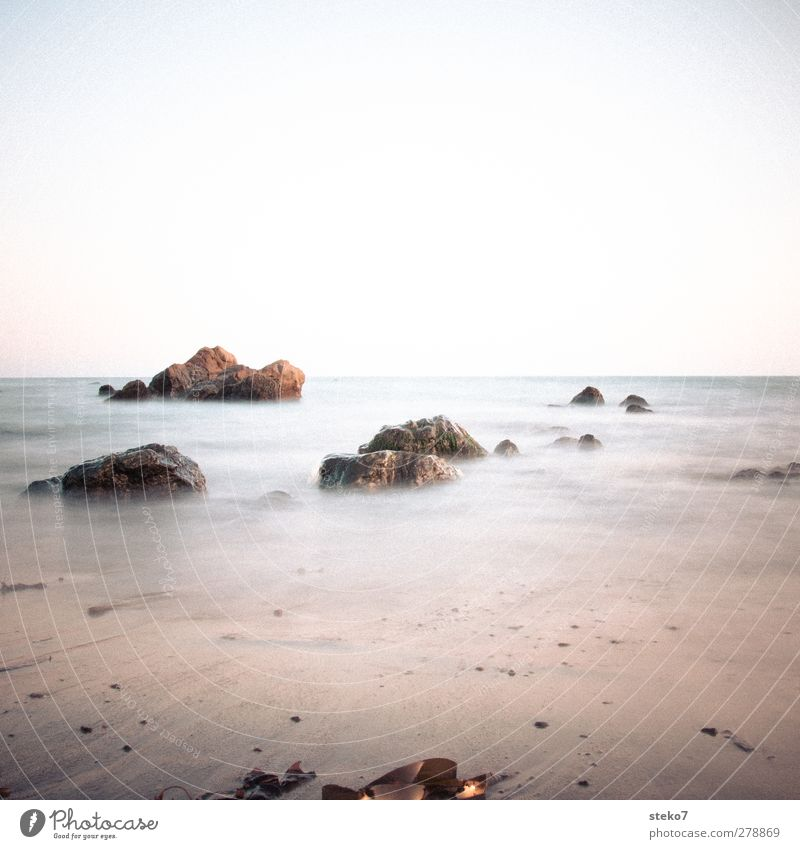 Pacific Cloudless sky Waves Beach Ocean Soft Blue Yellow Pacific beach Rock Calm Subdued colour Exterior shot Deserted Copy Space top Copy Space bottom