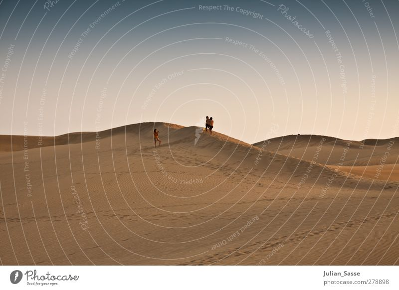 Human being Sky Nature Summer Landscape Warmth Sand Beautiful weather Desert Tracks Dune Cloudless sky Exotic Drought Maspalomas