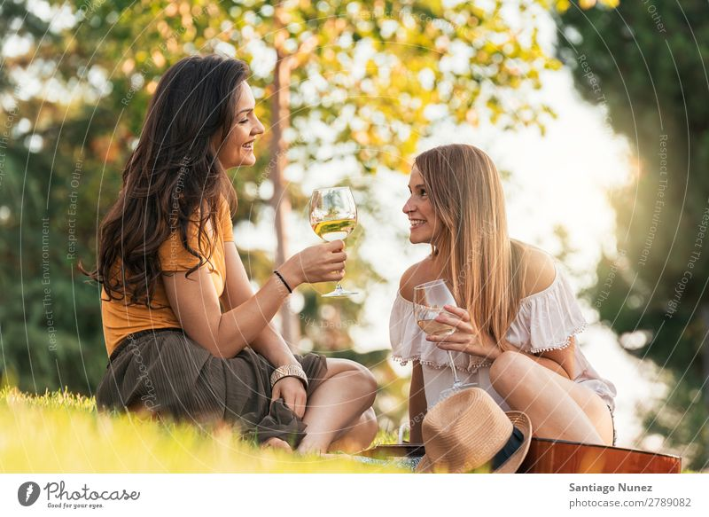 Beautiful women drinking wine in the park. Woman Picnic Friendship Youth (Young adults) Park Happy Wine Glass Drinking Toast clinking Guitar Summer Human being