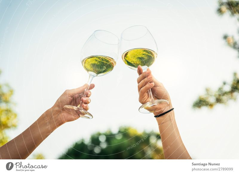 Female friends cheers clinking glasses of white wine. Wine Couple Toast Cheerful Glass Hand Woman Happy Background picture Feasts & Celebrations Happiness New