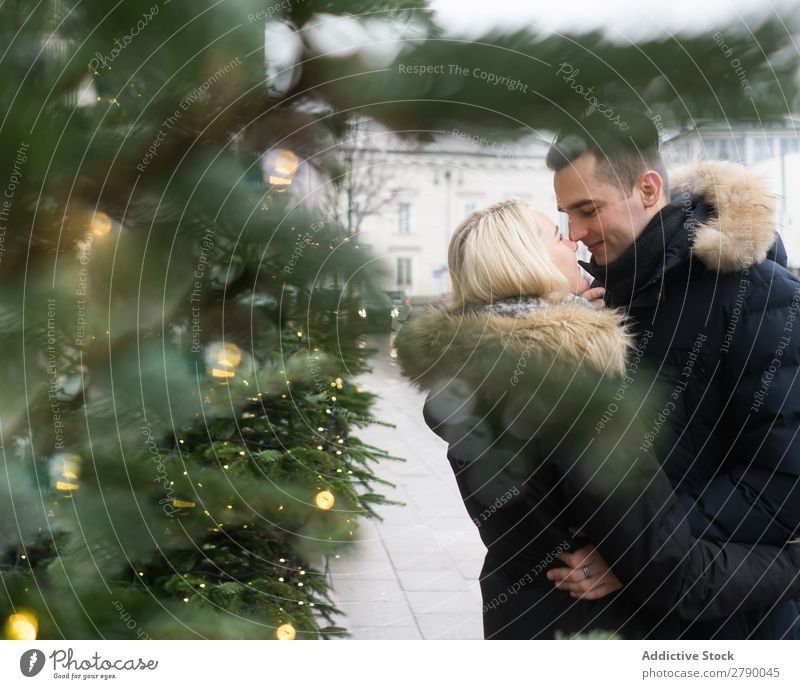 Smiling couple having fun on street near fir tree with fairy lights Couple Fairy lights Christmas & Advent Tree Street Guy Lady Happy