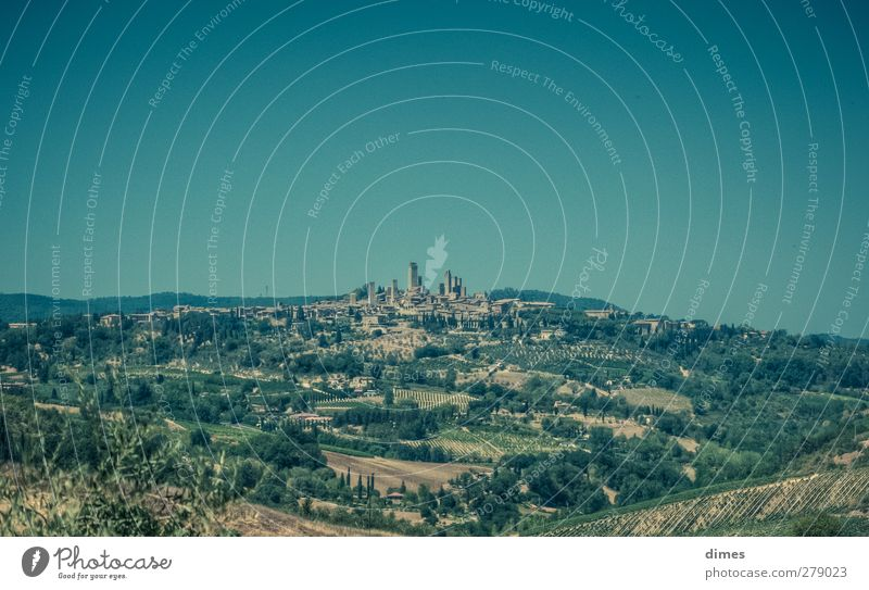San Gimignano in Tuscany (Italy) Meadow Hill Small Town Skyline Building Tourist Attraction Discover Historic Colour photo Exterior shot Deserted