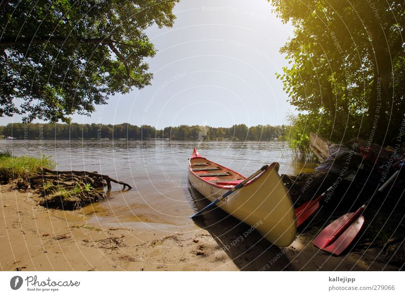 aground Lifestyle Leisure and hobbies Environment Nature Landscape Water Cloudless sky Horizon Summer Beautiful weather Tree Lake River Clean Calm Canoe