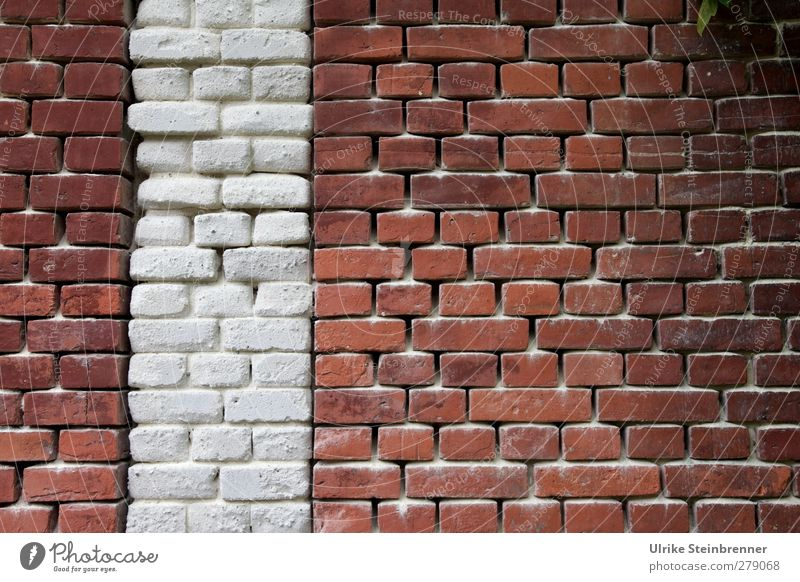 Old White Red House (Residential Structure) Wall (building) Senior citizen Wall (barrier) Building Sand Brown Power Glittering Stand Illuminate Safety
