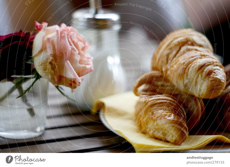 who tomorrow after the chamancinco. Food Dough Baked goods Sugar Croissant Nutrition Breakfast Lifestyle Contentment City trip Table Flower Rose Rose blossom