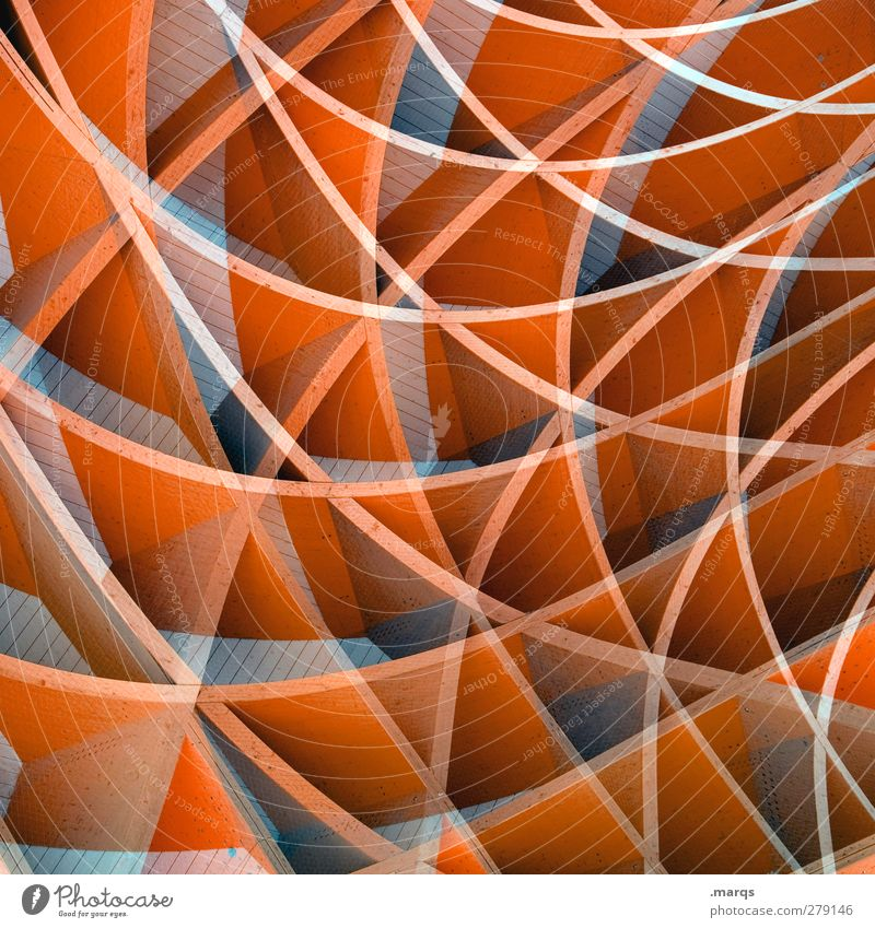 Beautiful Wood Style Line Art Background picture Orange Exceptional Elegant Design Crazy Lifestyle Cool (slang) Round Uniqueness Plastic