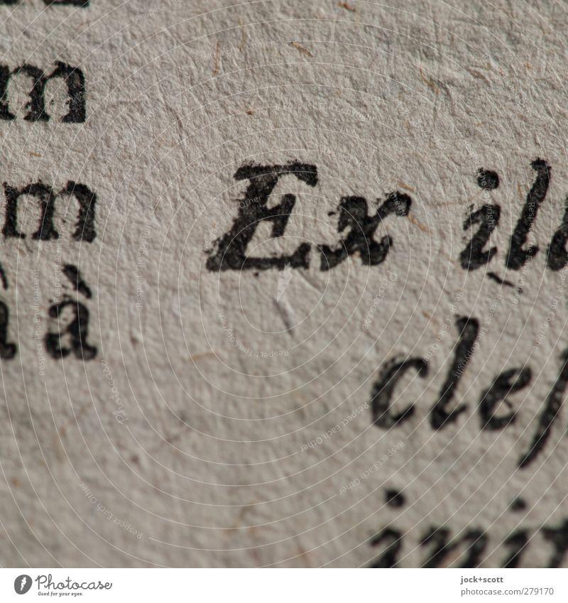prefix Old Art Authentic Esthetic Paper Reading Letters (alphabet) Historic Pure Thin Education Past Near Tradition Inspiration Original