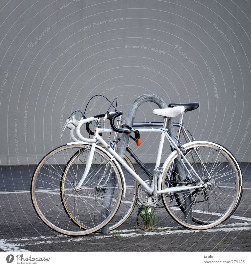 black `n white Sports Cycling Bicycle Wall (barrier) Wall (building) Facade Parking lot Metal Plastic Cool (slang) Movement Elegant Mobility Team Teamwork Black