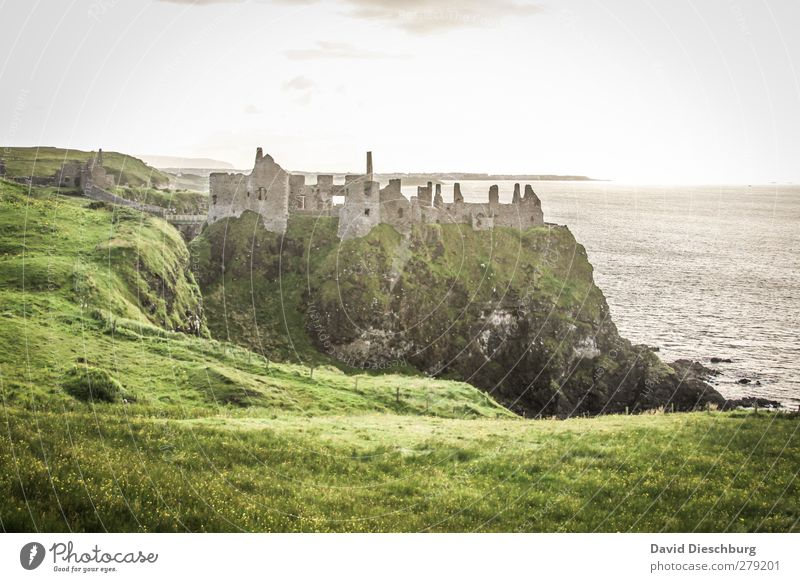 Dunluce Castle Vacation & Travel Sightseeing Sky Spring Summer Autumn Beautiful weather Grass Moss Foliage plant Coast Ocean Ruin Wall (barrier) Wall (building)