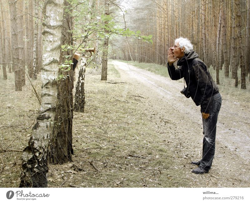 As you call into the woods, so it echoes Man Stand shout Scream Communicate White-haired Trip forest path Senior citizen Forest Trumpet To talk Proverb