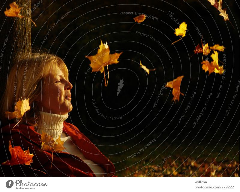 caressing in autumn Joy Well-being Meditation Woman Adults Face 1 Human being Nature Autumn Roll-necked sweater Blonde Relaxation To fall To enjoy Smiling Sit