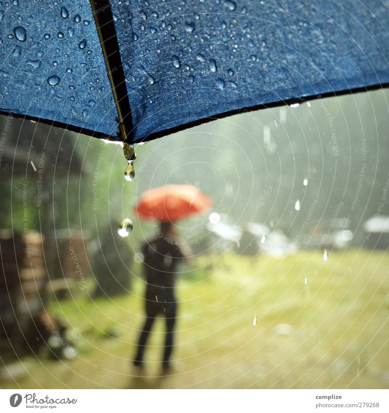summer rain Trip Summer Young man Youth (Young adults) Elements Water Drops of water Sun Meadow Lanes & trails Rubber boots Walking Blue Red Umbrella