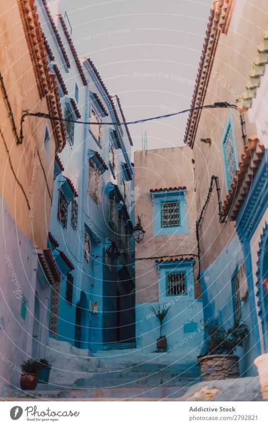 Narrow street with old buildings Street Building Chechaouen Morocco Construction Facade Old Blue Vacation & Travel Sunbeam Day Tourism Beautiful romantic