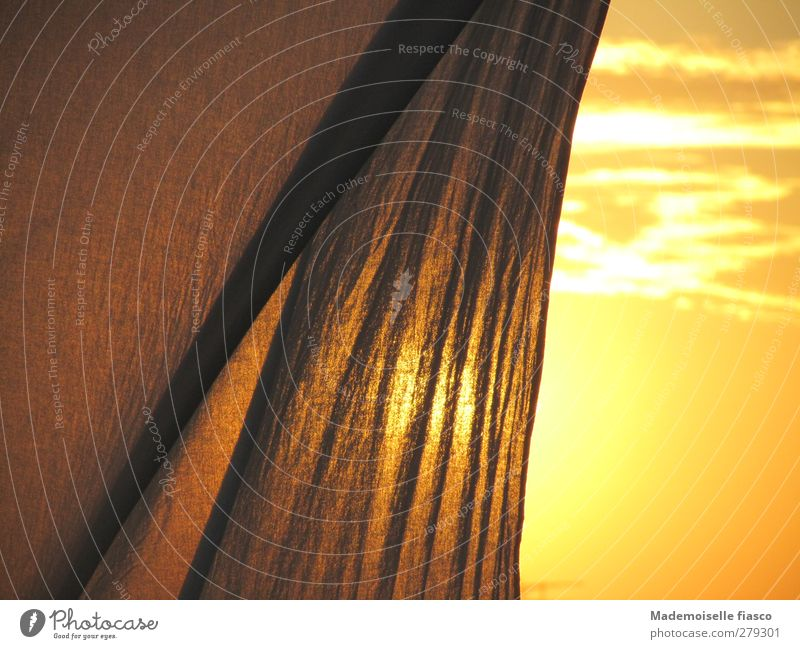 Evening hour has gold in its mouth Sunrise Sunset Summer Beautiful weather Balcony Terrace Drape Relaxation Warmth Brown Gold Orange Contentment