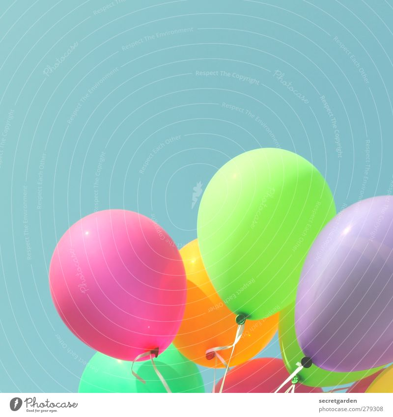 Blue Green Summer Joy Party Feasts & Celebrations Orange Pink Birthday Happiness Decoration Beautiful weather Balloon Network Round Violet