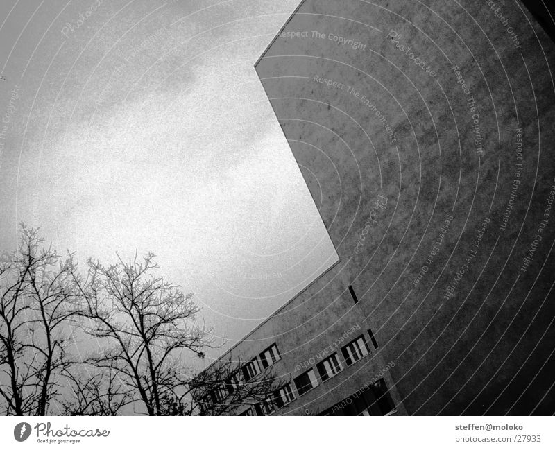 Berlin 2002 Berlin zoo Wall (barrier) Fire wall House (Residential Structure) Window Town New building Plaster Facade Clouds Gray Gloomy Stagger Architecture